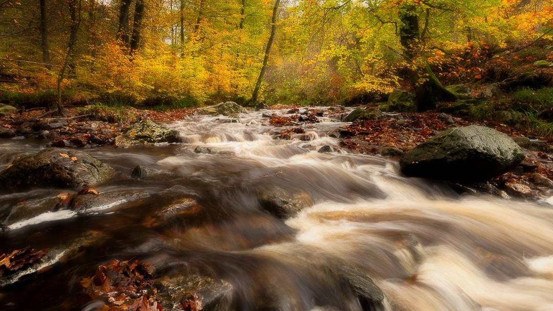 La Hoegne - Ardennen - Fotografie Krist