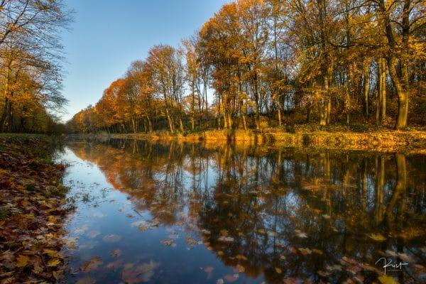Herfst in de Palingbeek