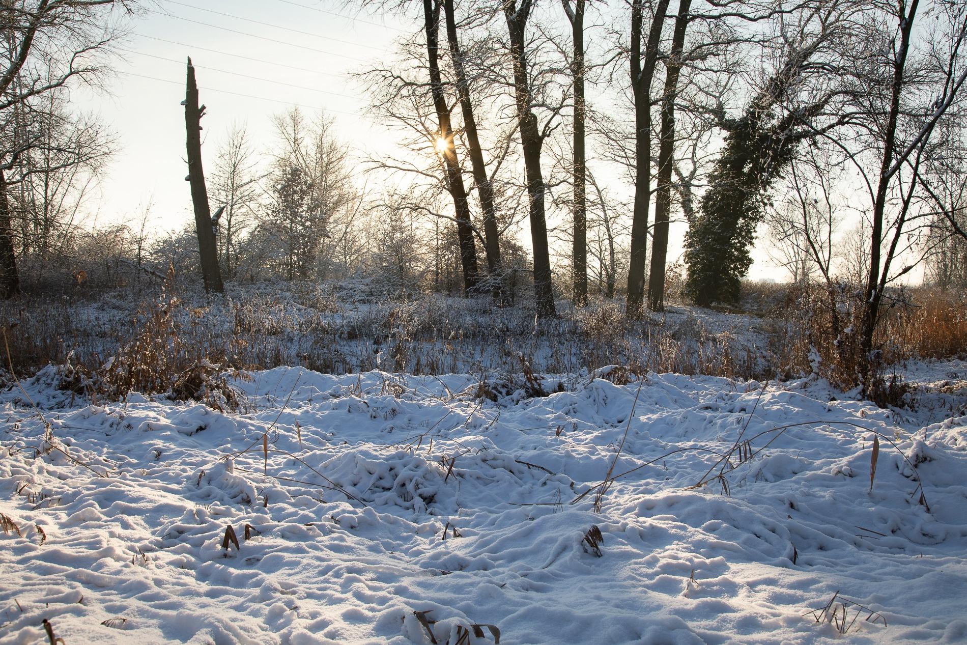 Fotografie Krist Hooghe Kalender Menen Januari Sneeuwlandschap