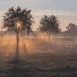 de warmste kalender 2020 - Menen zonsopkomst op het veld