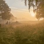 de warmste kalender 2020 - Menen Leiemeersen natuurpunt