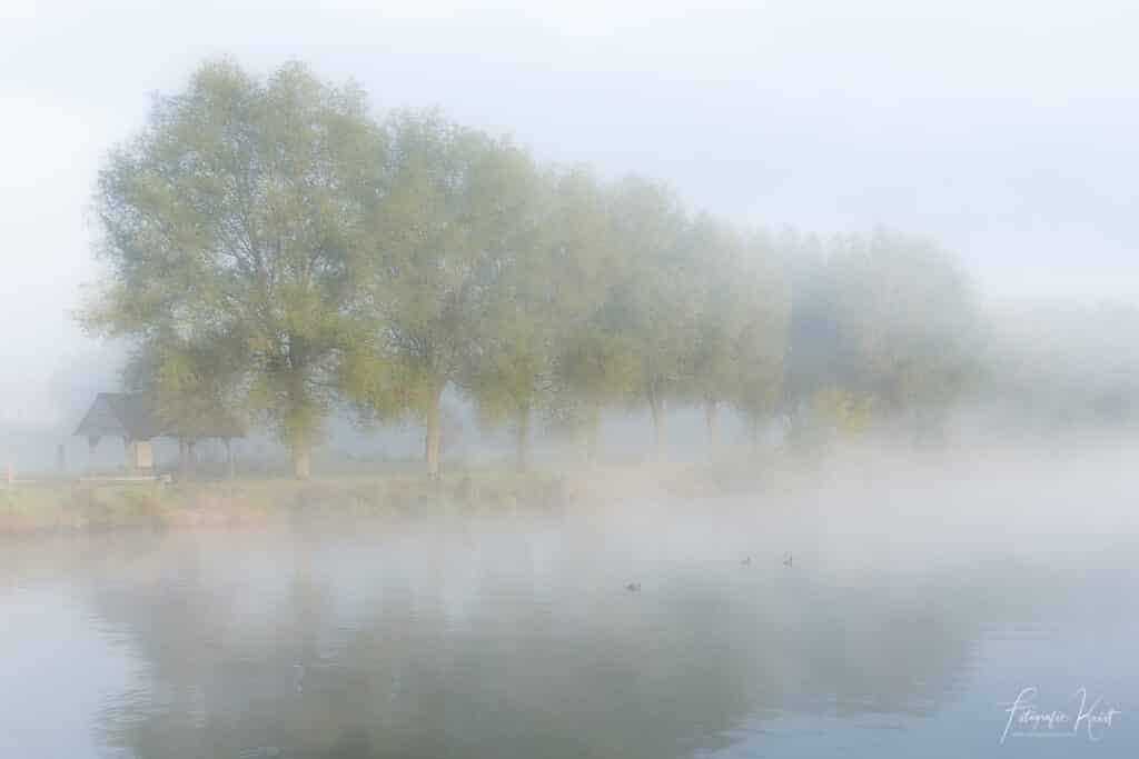 Een mistige ochtend langs de Leie in Kortrijk, Belgium-