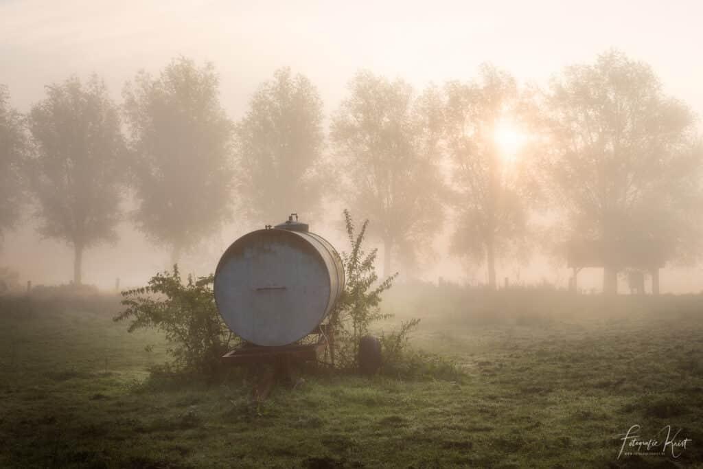 een sfeervolle ochtend op de velden langs de Leie in Kortrijk, Belgiulm-