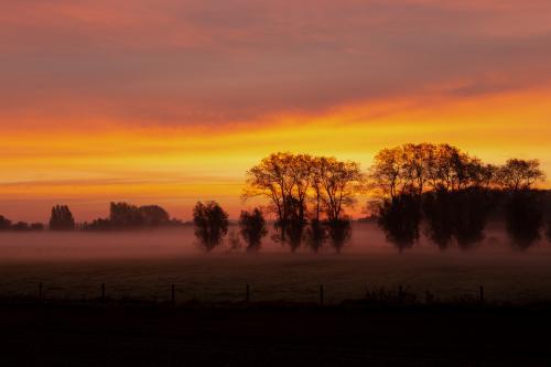 Brugge - Damme tijdens de herfst - FotografieKrist