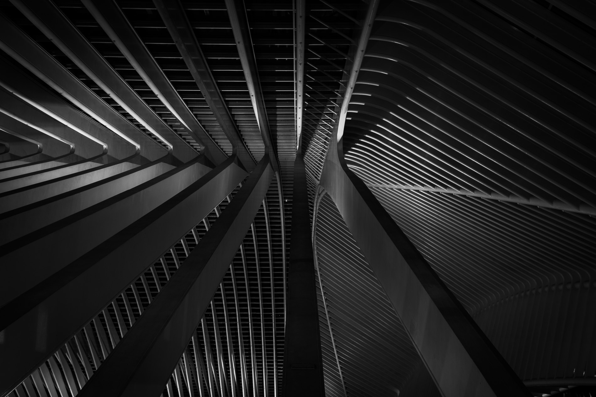 Architectuur Luik-Station-Guillemins