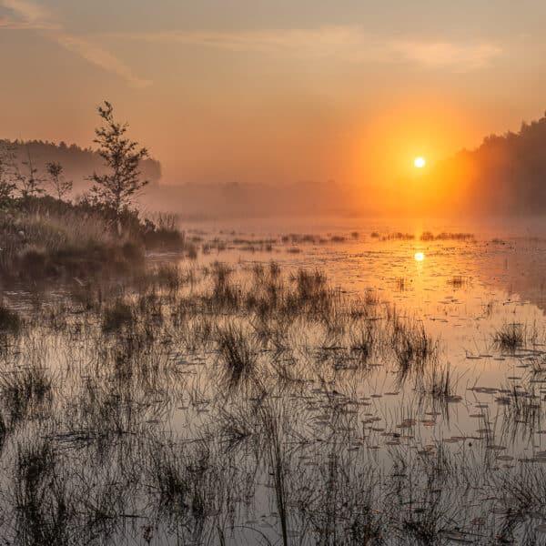 sfeervolle zonsopkomst aan de teut in zonhoven