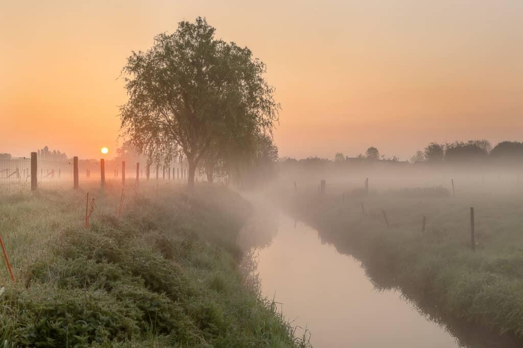 BIJLAGEDETAILS Eigen link  Een-mistige-ochtend-in-het-veld-te-Menen-Vlaamse-Velden