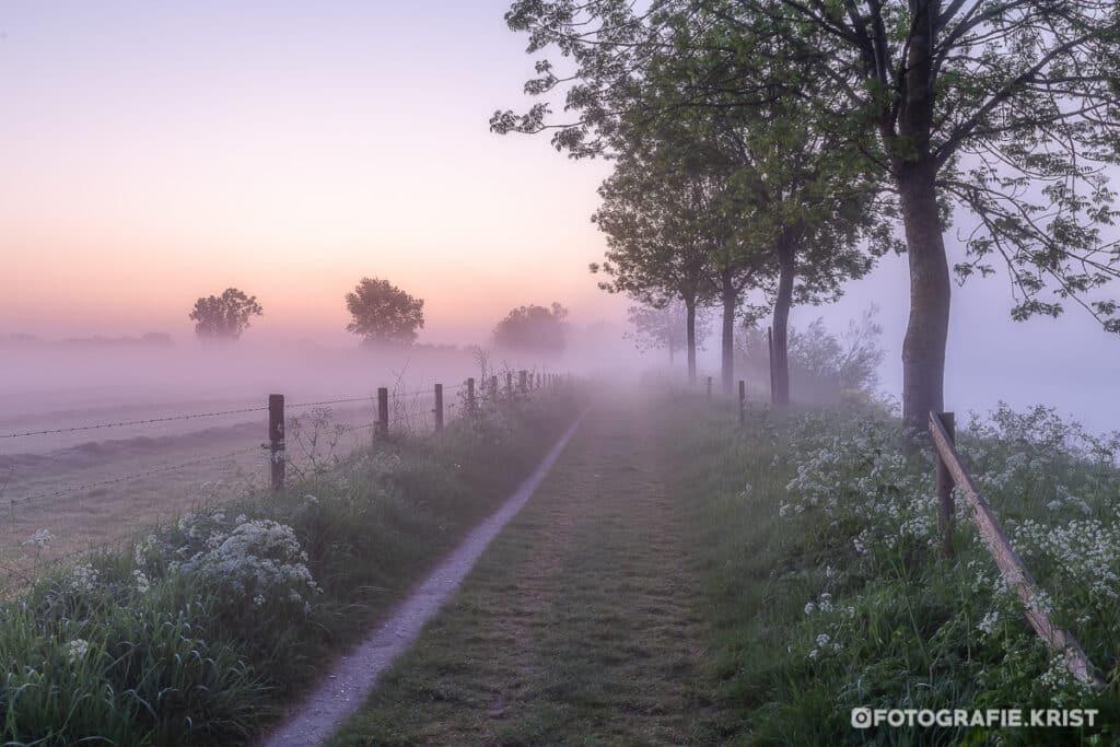 Mistige ochtend langs de Leie in Wevelgem